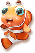 clown-fish