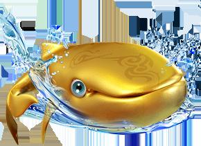 gold-money-fish